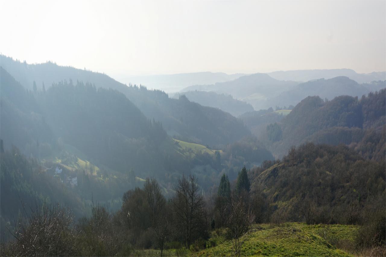 Blick von Ruine Falkenstein