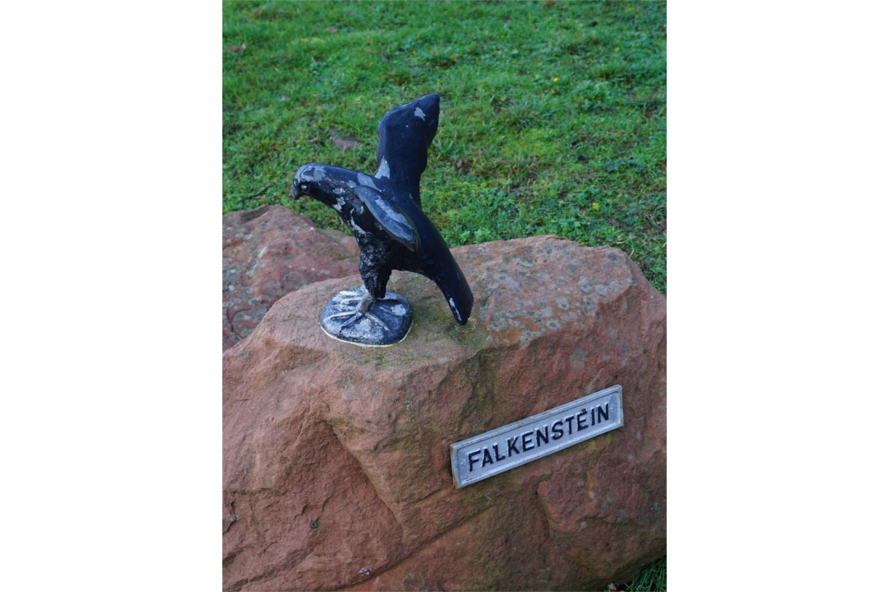 Falke - Falkenstein
