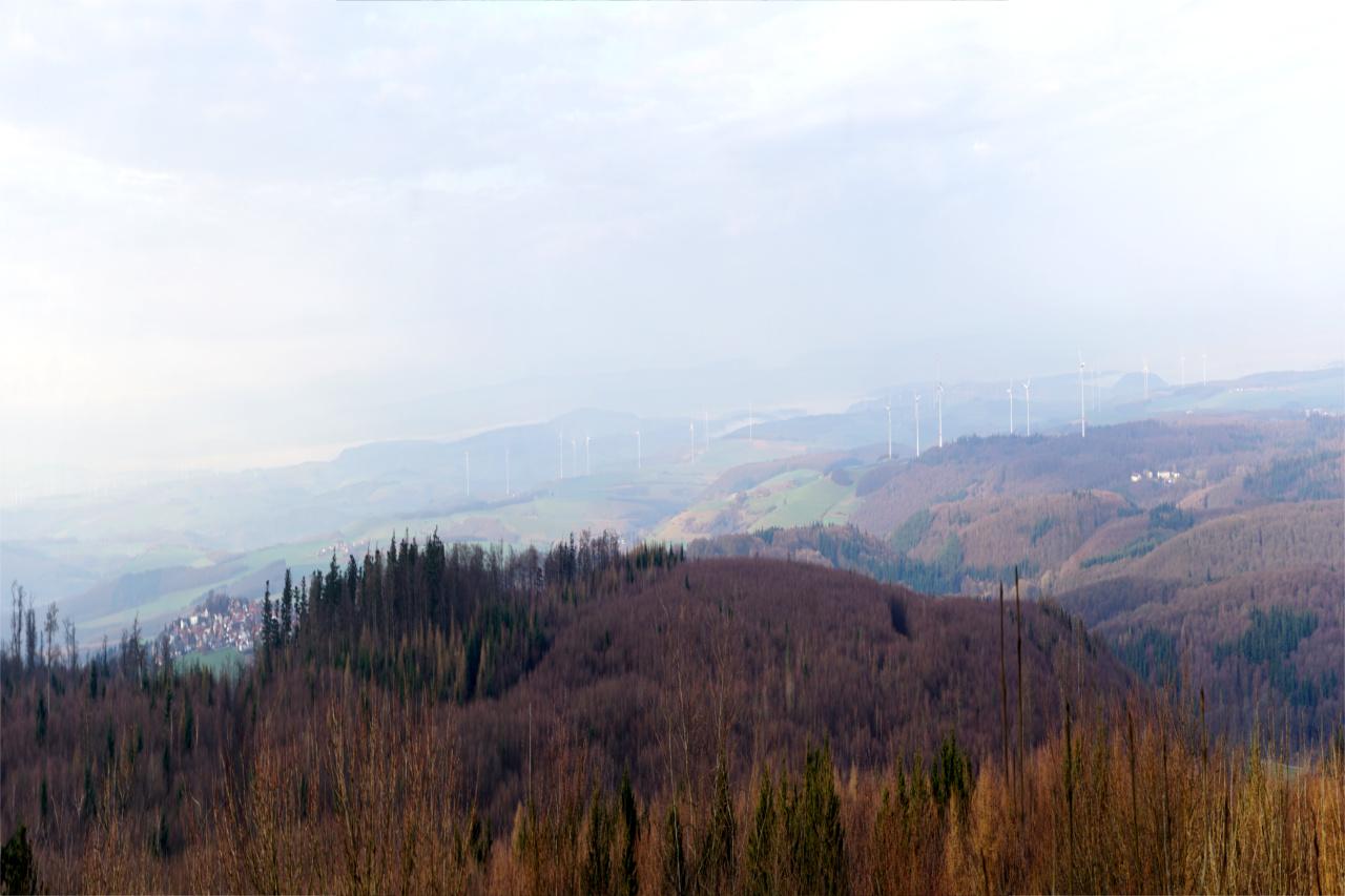 Blick vom Donnersberg