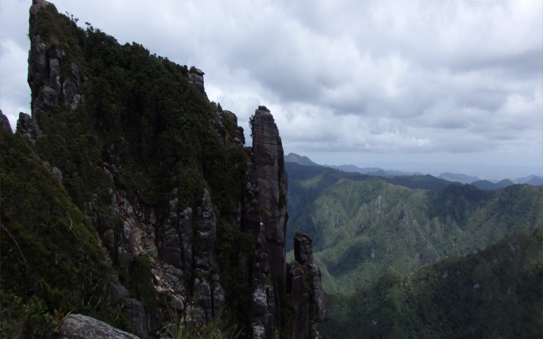 Geschützt: Pinnacles Track