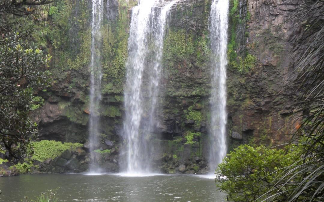 Geschützt: Whangarei Falls