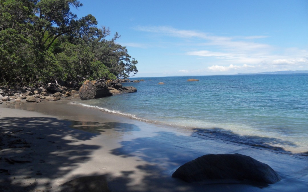 Geschützt: Whangarei Peach Cove
