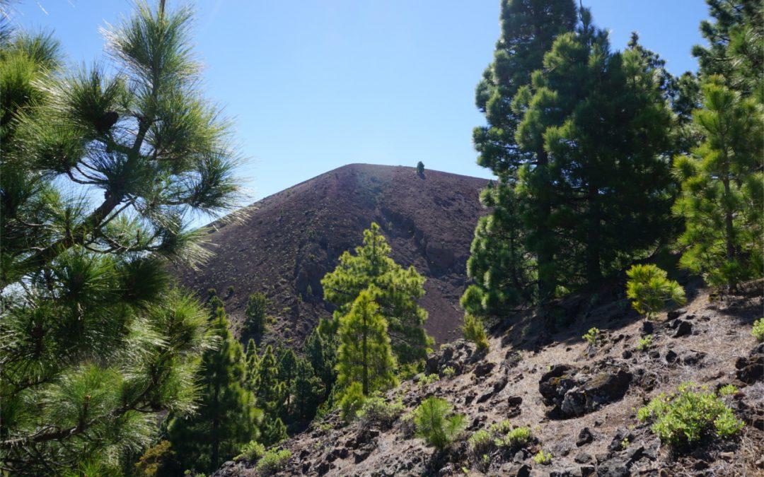 La Palma – Pico Birigoyo – Letterbox