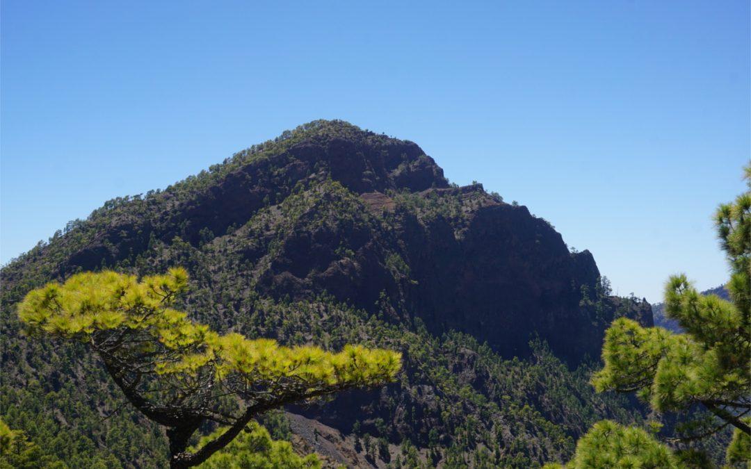 La Palma – Pico Bejenado – Letterbox