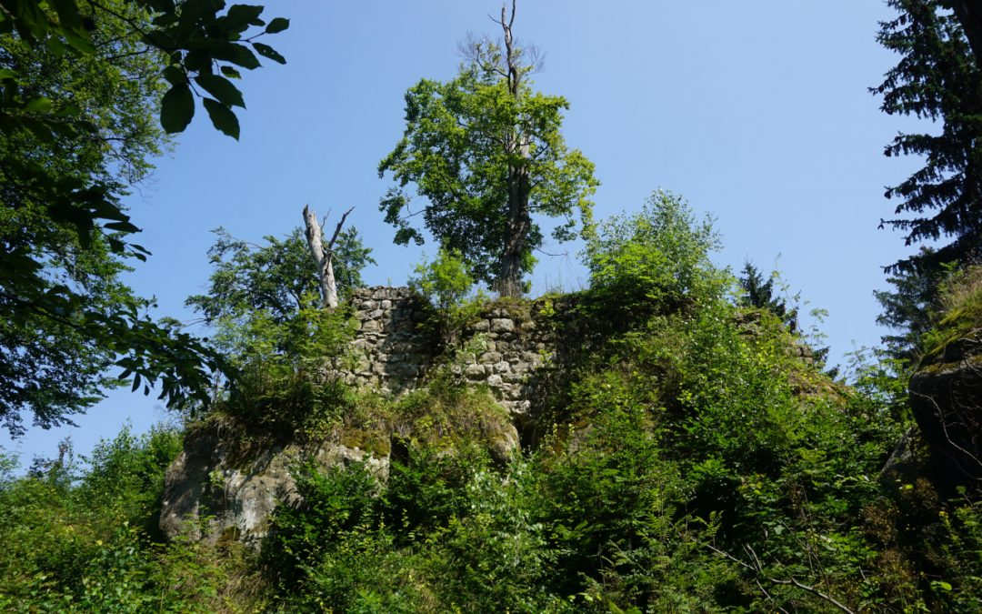 SN ZI Ruine Karlsfried – Fuchskanzel